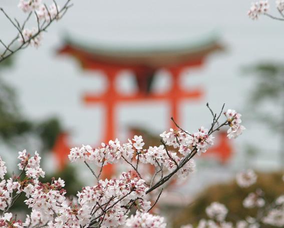 0045_itsukushima_torii