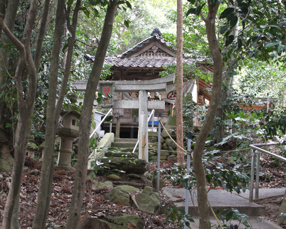 3671_tanegaike_haiden