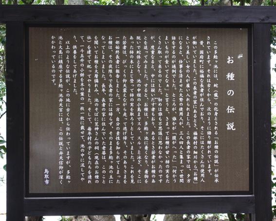 3673_tanegaike_densetsu