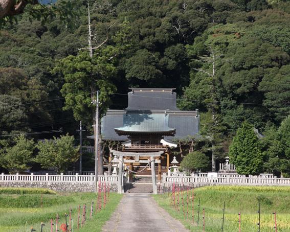 2955_tayasu_zenkei