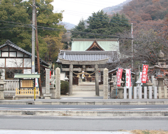 5926_itozaki_zenkei